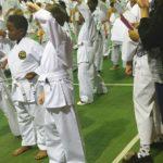 Karate Massgrading